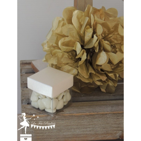 Cube à dragées ivoire nacré et transparent